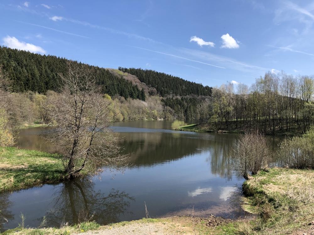 Umgebung Kronenburger See